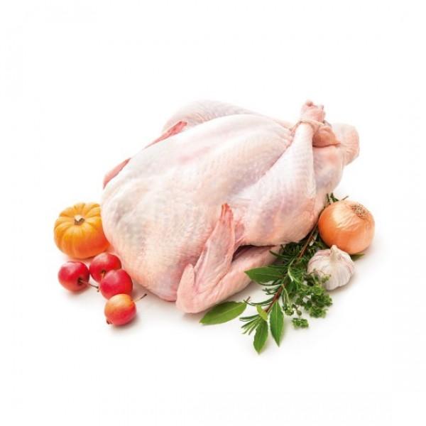 Pavo entero de producción ecológica (11.42€/kg.) (ud. 9 kg. aprox.)